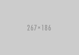 267x186